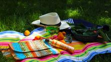 места за пикник