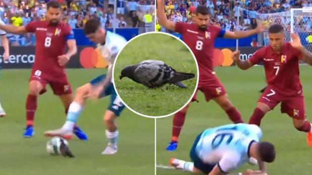 Гълъб взима топката на Родриго Де Паул